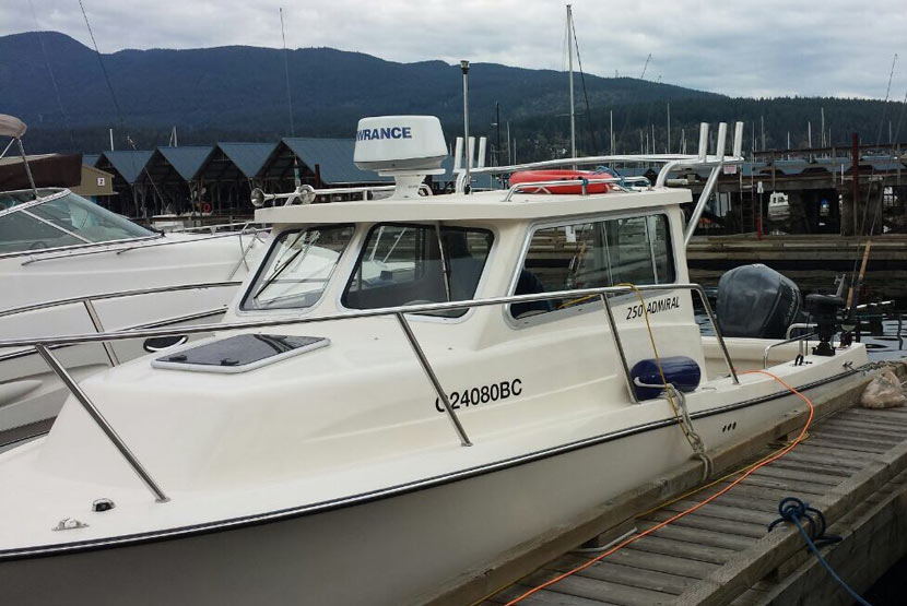 Boat Railings In Vancouver Lower Mainland Bc Cedric Marina